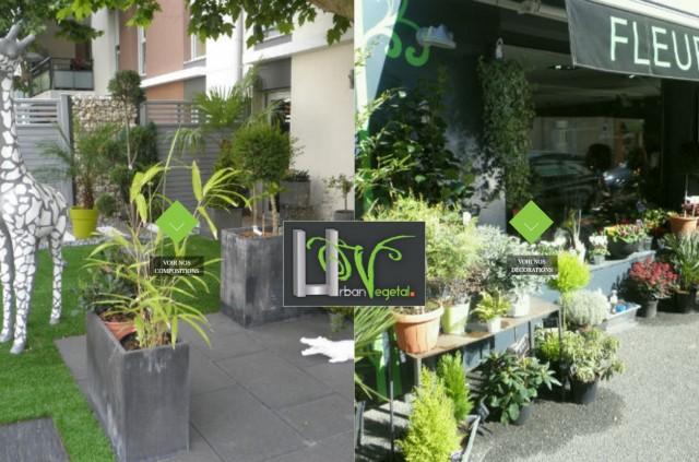 urban vegetal