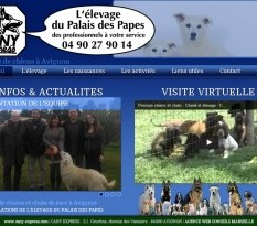 élevage de chiens de race à Avignon