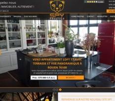 Achat de maison et appartement de luxe sur Rouen
