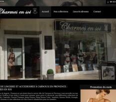 Articles de lingerie fine à Carnoux-en-Provence