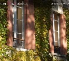Vente de château viticole vers Bordeaux