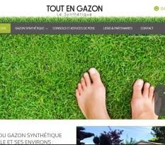 Vente de gazon synth�tique pas cher � Aix en Provence
