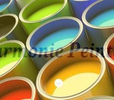 Entreprise artisanale de peinture à Pont l'Evêque
