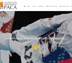 ligue regionale de taekwondo paca