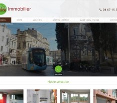 agence immo montpellier