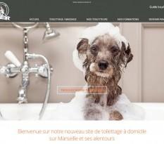 Faire toiletter son chien à domicile à Marseille