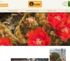 Acheter un cactus euphorbia à Aubagne