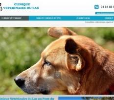 Vétérinaire en urgence Toulon